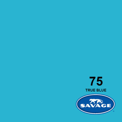 """Picture of 53"""" Seamless True Blue 75-1253"""