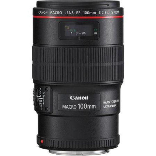 Picture of Canon 100mm F2.8 L IS Macro Lens