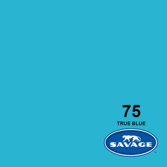 Picture of 9' Seamless  True Blue 75-12