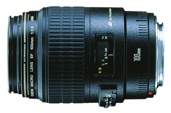Picture of Canon 100mm F2.8 Macro Lens