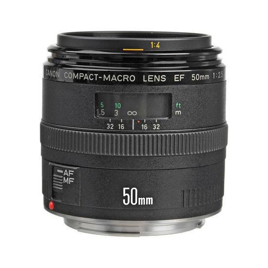 Picture of Canon 50mm F2.5 Macro Lens