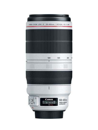Picture of Canon 100-400mm vII L F4.5-5.6 IS