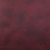 Picture of Canvas Painted Background 5x7 Scarlet