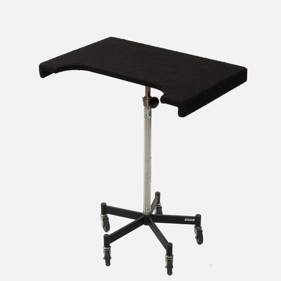 Picture of Posing Table
